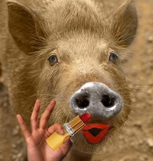 Lipstick on a Pig OK